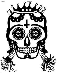 skinznbonez logo